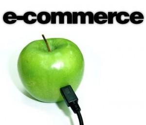 """""""Ecommerce web development"""""""