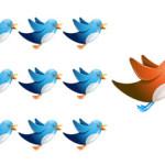 buying followers twitter